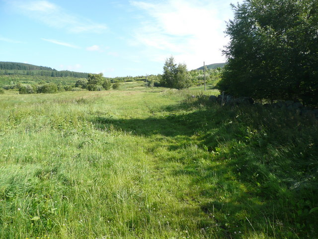 Grass track and rough pasture beyond Newton
