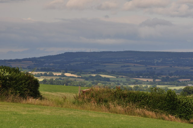 Mid Devon : Countryside & Hedgerows