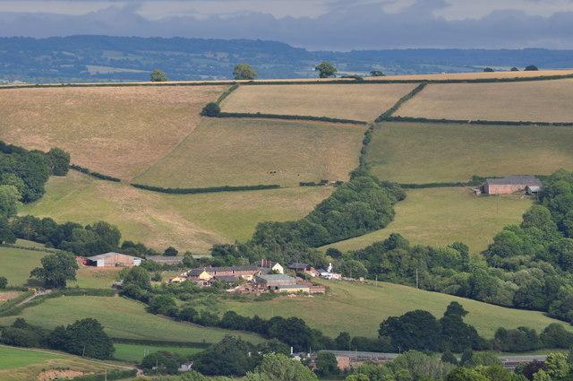 Mid Devon : Holwell Farm & Countryside