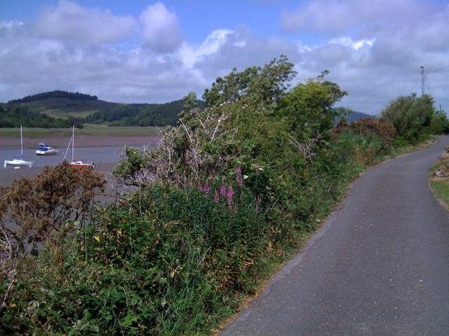 Coastal lane in Kippford
