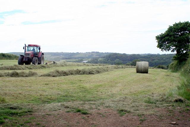 Hay making at Gwennap