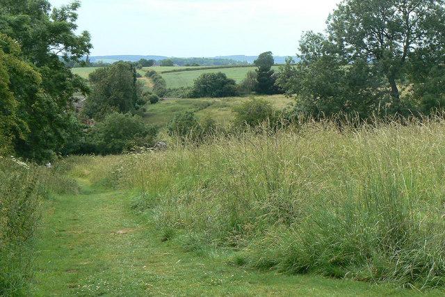 Field near Surgeys Lane