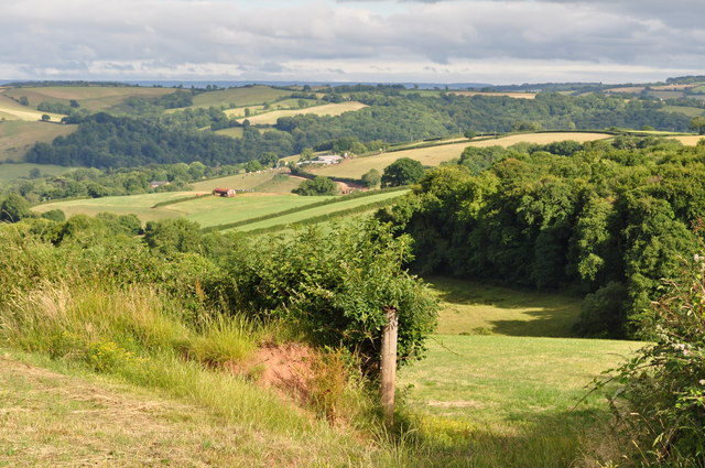 Mid Devon : Hedgerows & Countryside