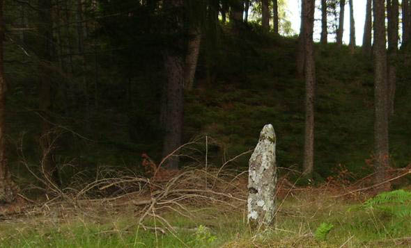 A small standing stone