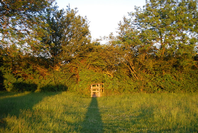 Stile in a hedge