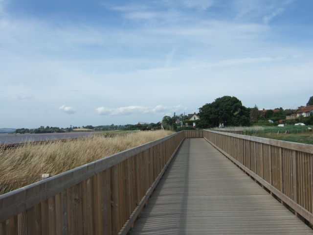 Exe Estuary Trail, with the river on the left