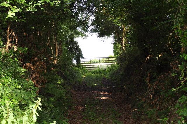 Mid Devon : Farm Track to the Field