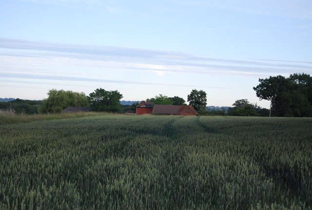 Hall's Green beyond the wheat fields