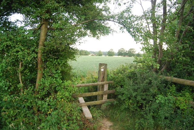 Stile on the edge of Eight Acre Wood