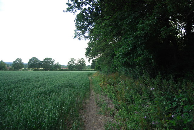 Footpath along the edge of Eight Acre Wood