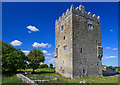 M4446 : Castles of Connacht: Ballinderry, Galway by Mike Searle