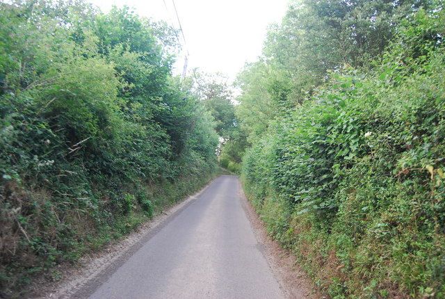 A sunken lane north of Sharp's Place
