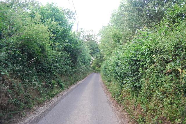 A sunken lane north of Sharp's Place