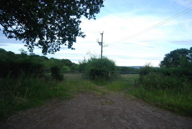 Gates off the lane south of Bushes Farm