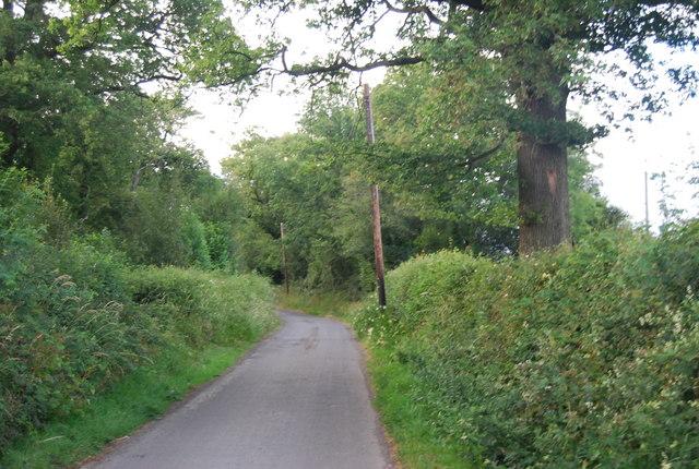 Lane to Bushes Farm