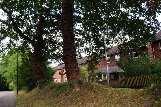Tiverton : Seven Crosses Road & Houses