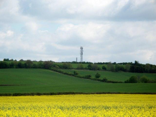 Masts on Waddon Hill