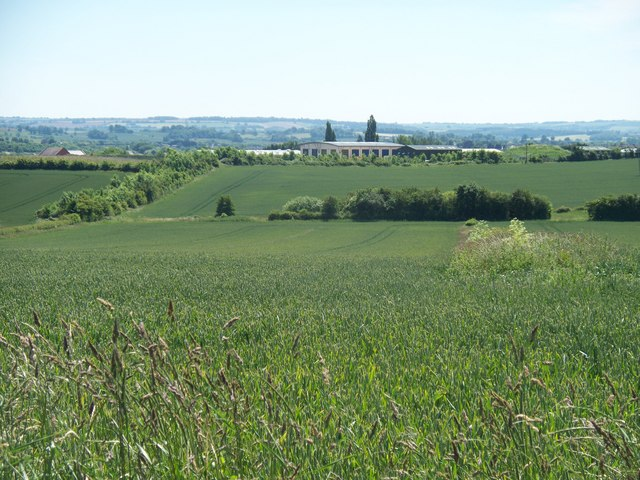 Crops and industry