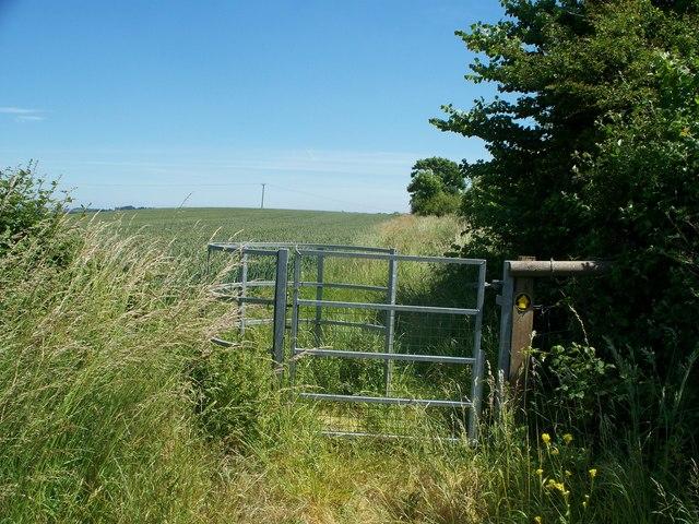 Towards Honington