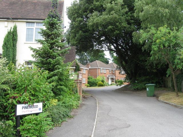 Pinewood, Bassett, Southampton