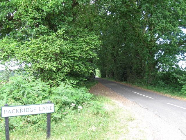 Packridge Lane from Rownhams Lane