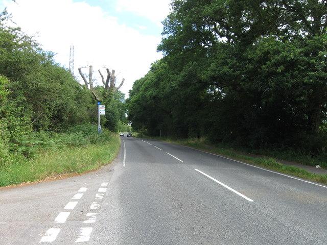 Rownhams Lane from Packridge Lane