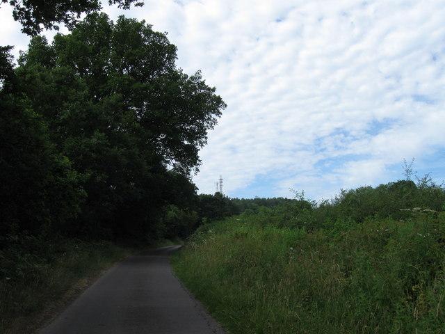 Packridge Lane towards Toot Hill