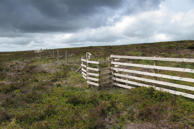 New access gate and fence, Langden Head