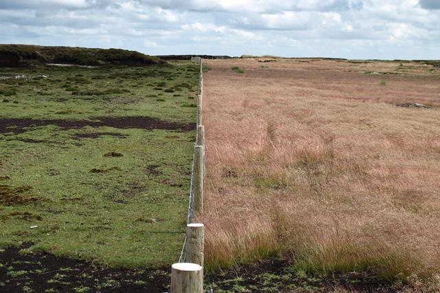 Boundary fence on Hawthornthwaite Fell Top