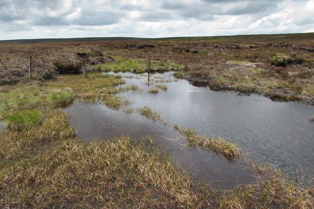 Moorland pool at Lingy Pits
