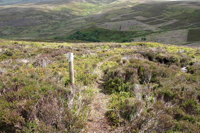 Waymarked path to Hawthornthwaite Fell Top