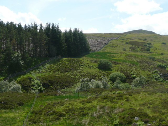Dry stone wall heading up Meall Mòr