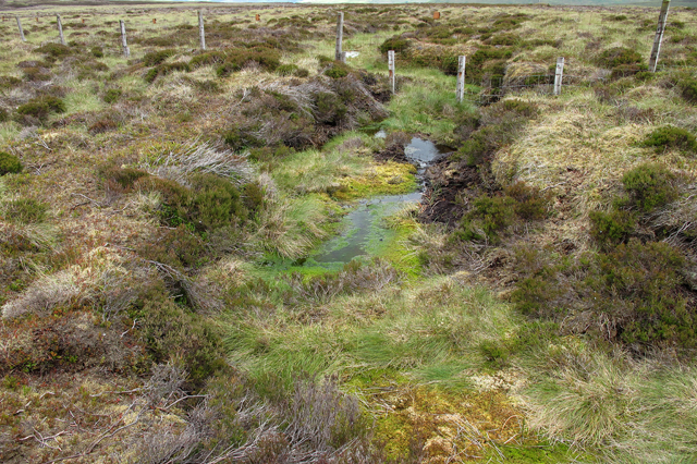 Boundary fence across boggy pool on Mere Clough Head