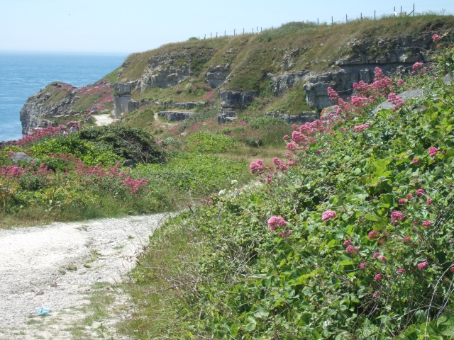 South West Coast Path entering disused quarries,  Freshwater Bay, Portland