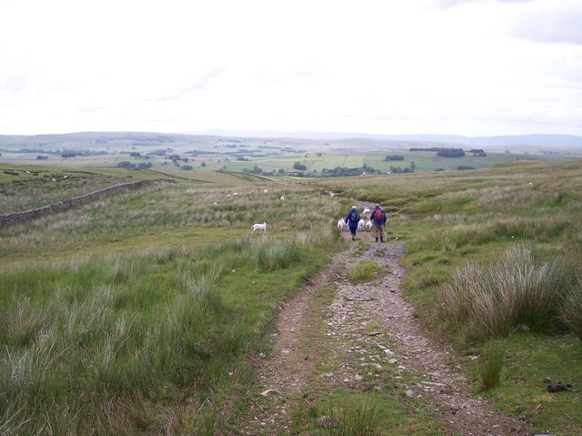 Track on Langdale leads to Cowbound Lane