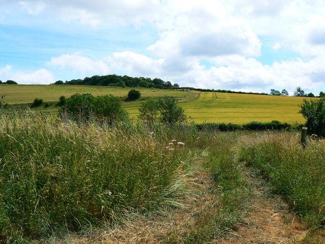 Farmland near Preston