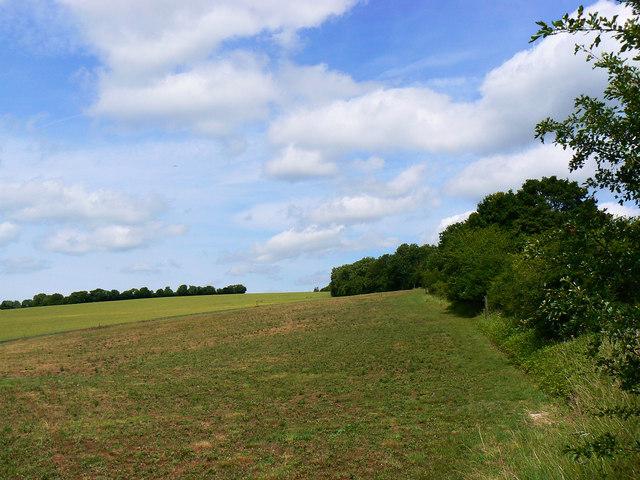 Farmland near a bridleway, near Preston