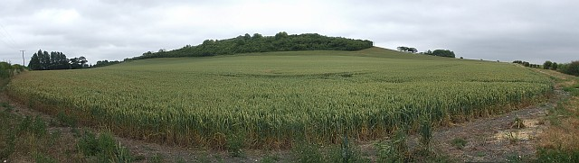 Westend Hill panorama