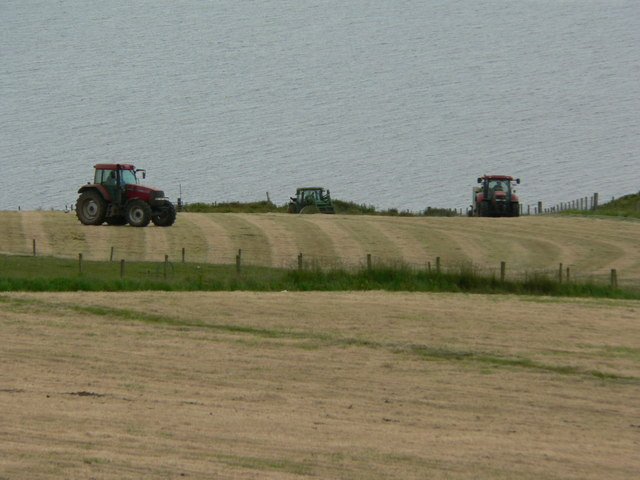Cliff top silage making