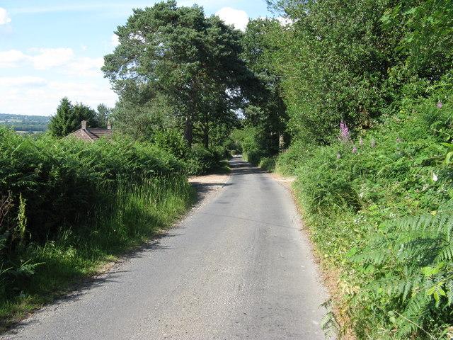 Howbourne Lane towards Howbourne Farm