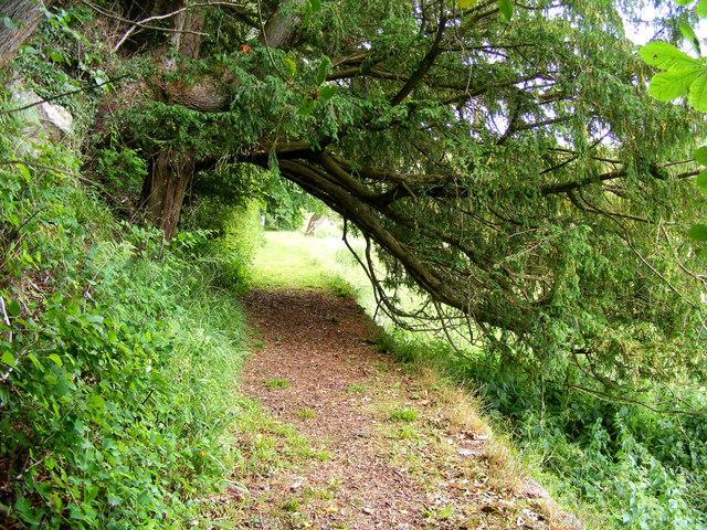 A Walkway At Kilravock Castle