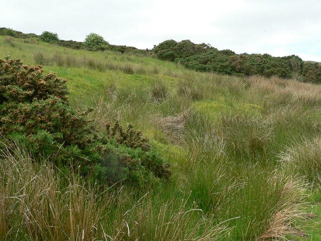 Rough hillside above Kilervan