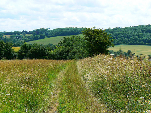 Looking south down the bridleway to Preston