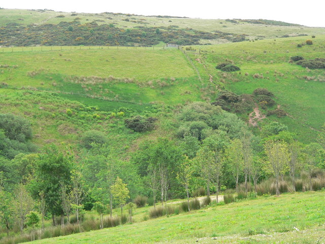 Steep valley east of Knockstapplemore