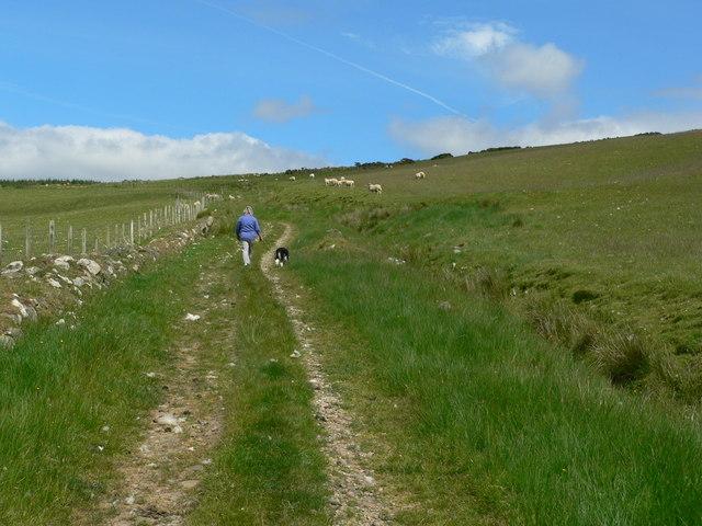 Track across hillside