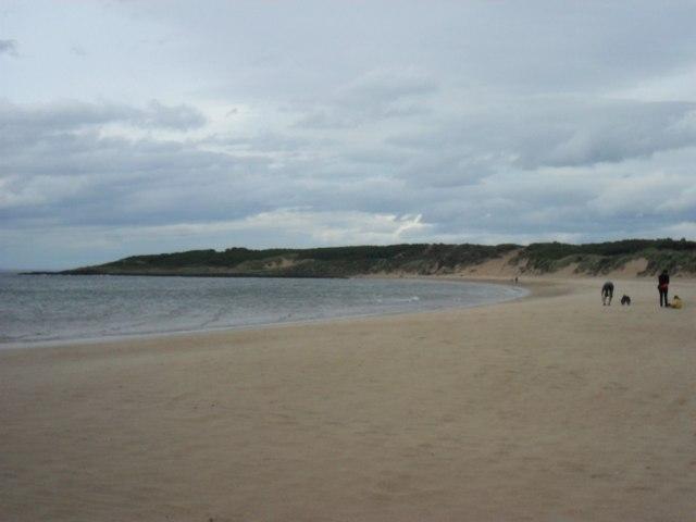The golden sands of Gullane Bay