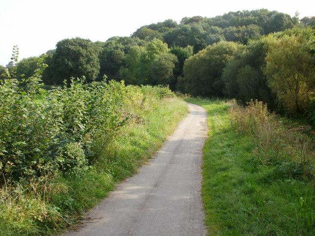 Canal path, Newport