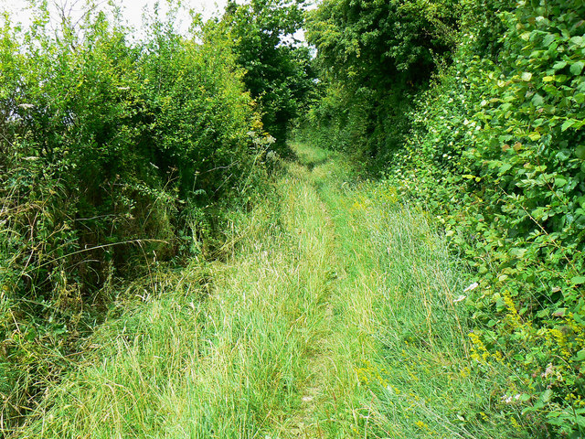 Looking up the bridleway to Baydon