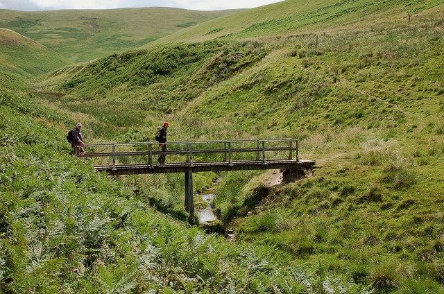 Footbridge over the Halter Burn