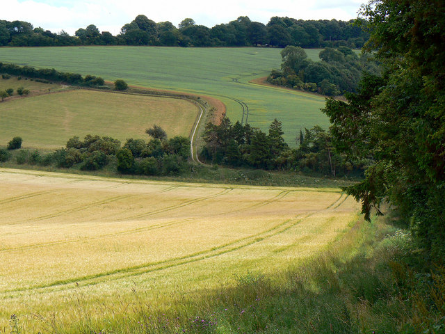 Down the footpath to Long Copse, near Preston